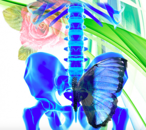 pelvic-balance-dr-emily-splichal-300x267